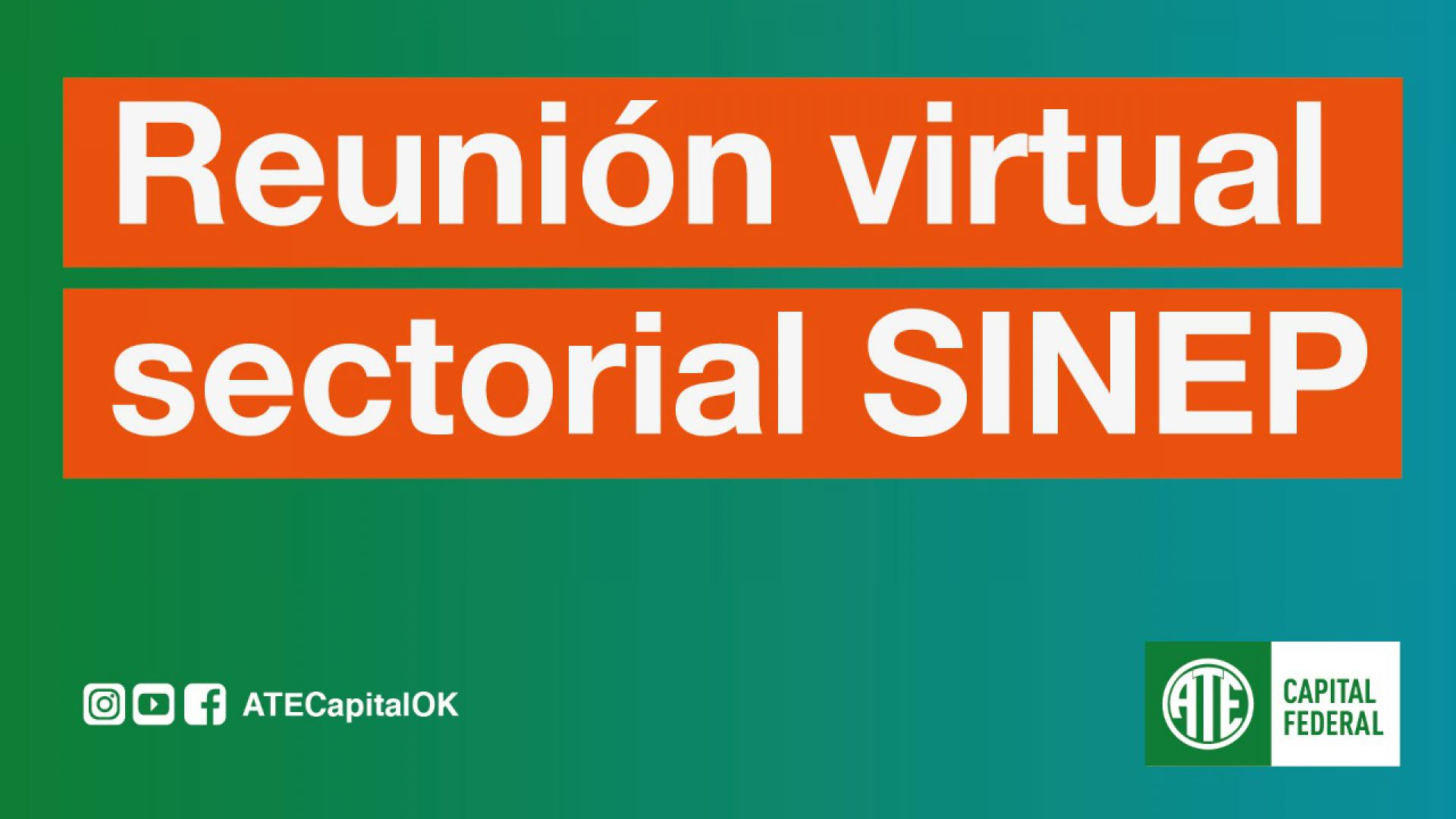 Reunión virtual sectorial SINEP